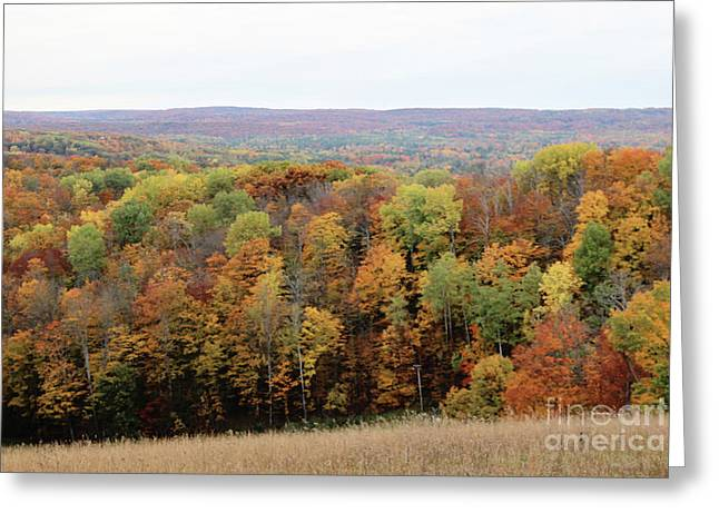 Michigan Autumn Greeting Card