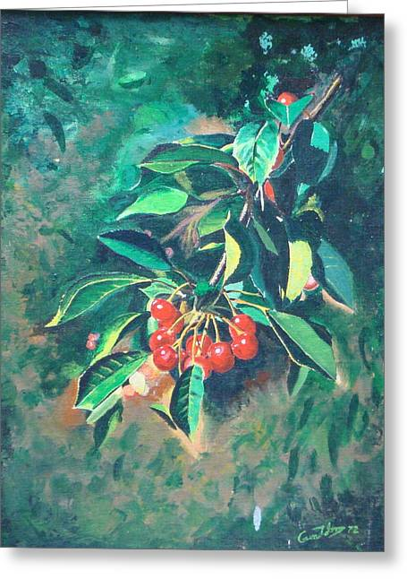 Michigan Cherries Greeting Card