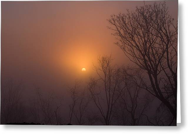 Mid Day Fog Greeting Card by Naman Imagery