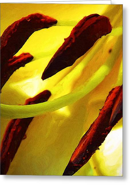 Mid-lily Study Greeting Card