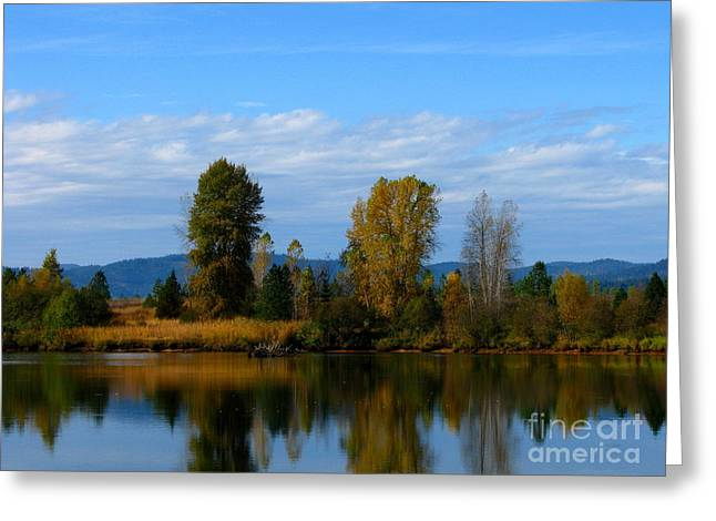 Mid Morning Coffee Greeting Card by Greg Patzer