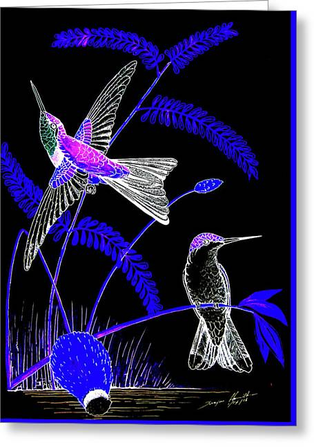 Mid-night Humming Bird Greeting Card by Dwayne Hamilton