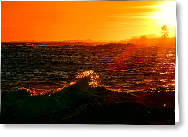 Midcoast Maine Sunset Greeting Card by Olivier Le Queinec
