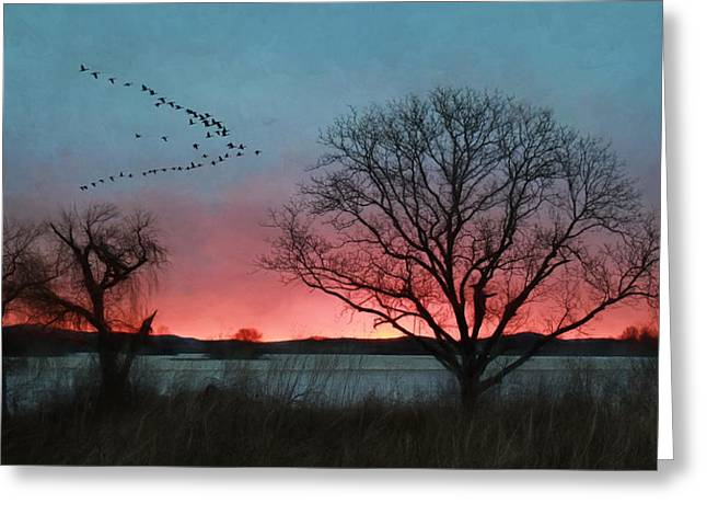 Middle Creek Sunrise 4 Greeting Card by Lori Deiter