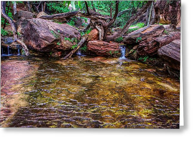 Middle Emerald Pools Zion National Park Greeting Card by Scott McGuire