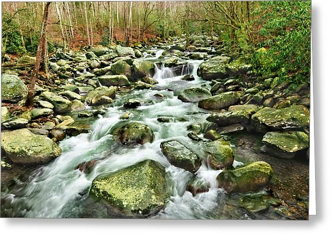 Middle Prong Little Pigeon River Greeting Card by Edwin Verin