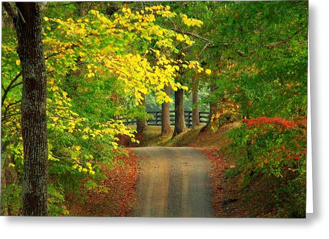 Middleburg Road Greeting Card