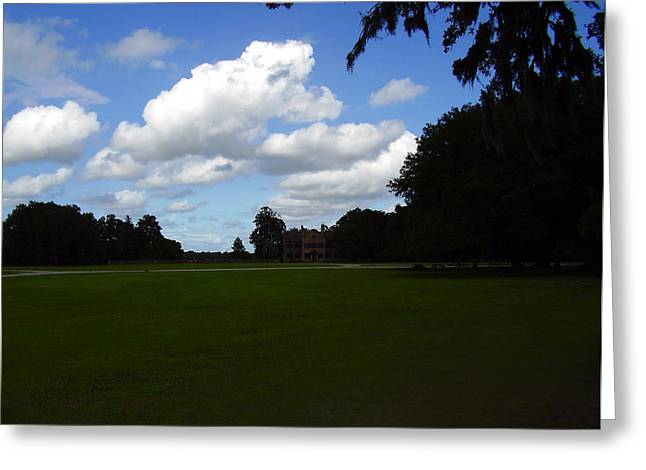Middleton Place Greeting Card by Flavia Westerwelle