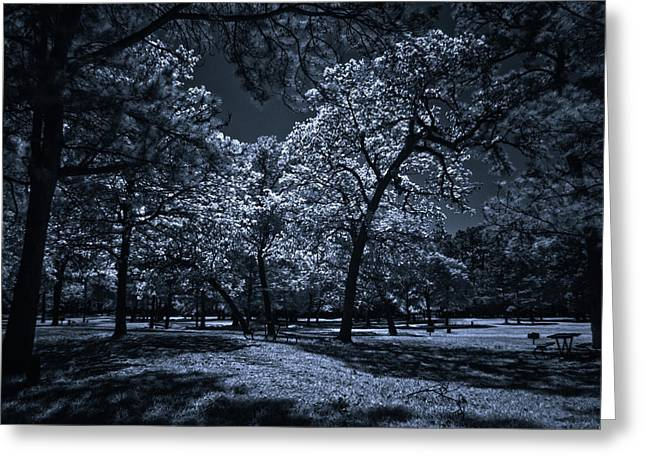 Greeting Card featuring the photograph Midnight Blues by Linda Unger