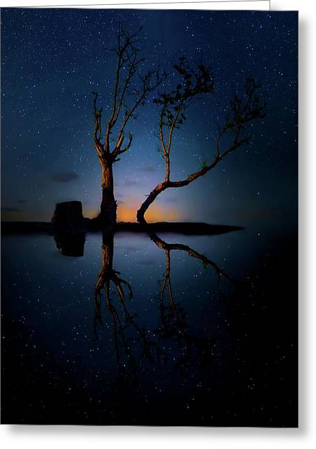 Greeting Card featuring the photograph Midnight Dance Of The Trees by Mark Andrew Thomas