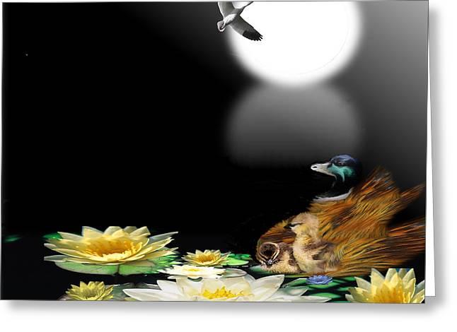 Midnight Serenity Greeting Card by Belinda Threeths