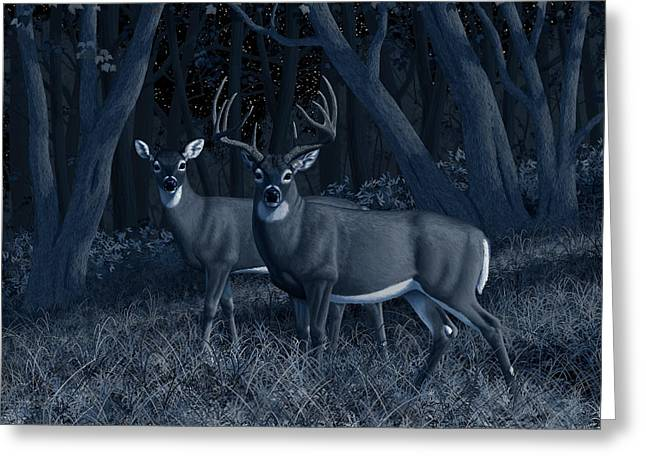 Midnight Stroll - Whitetail Deer At Night Greeting Card by Crista Forest
