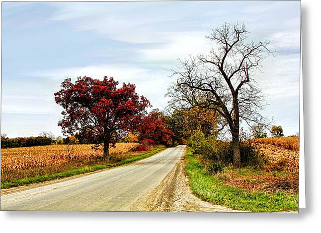 Midwest Autumn  Greeting Card