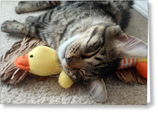Mikino And Ducky Naptime Greeting Card by Jaeda DeWalt