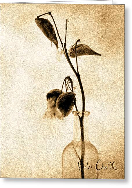 Milk Weed In A Bottle Greeting Card