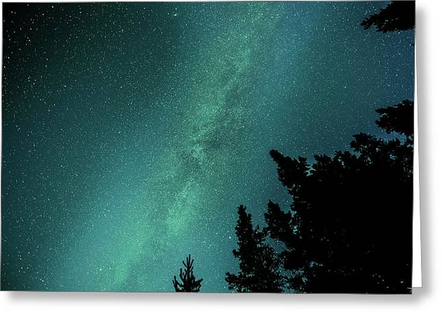 Milky Way Above The Trees Greeting Card
