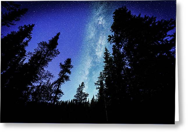 Milky Way Among The Trees Greeting Card