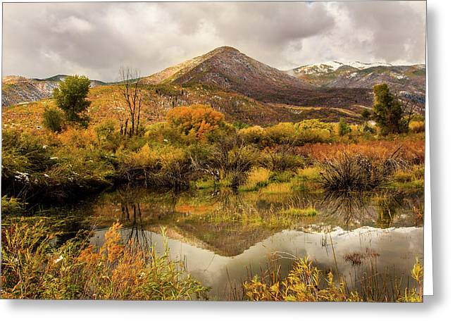 Mill Canyon Peak Reflections Greeting Card by TL Mair