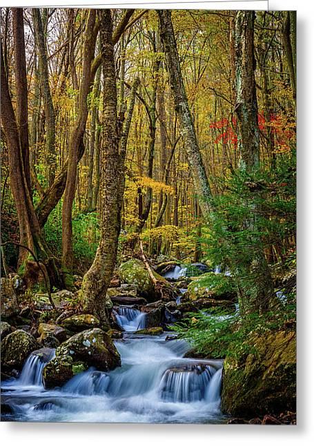 Mill Creek In Fall #1 Greeting Card