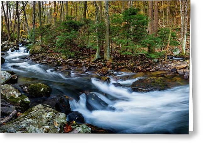 Mill Creek In Fall #2 Greeting Card