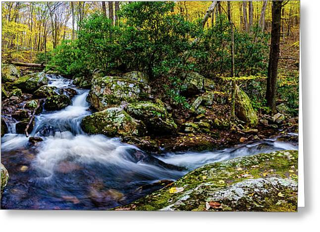 Mill Creek In Fall #4 Greeting Card