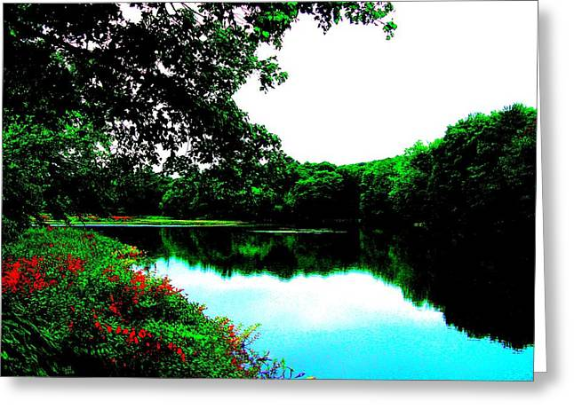 Mill Pond - Ashland Ma Greeting Card by Cliff Wilson