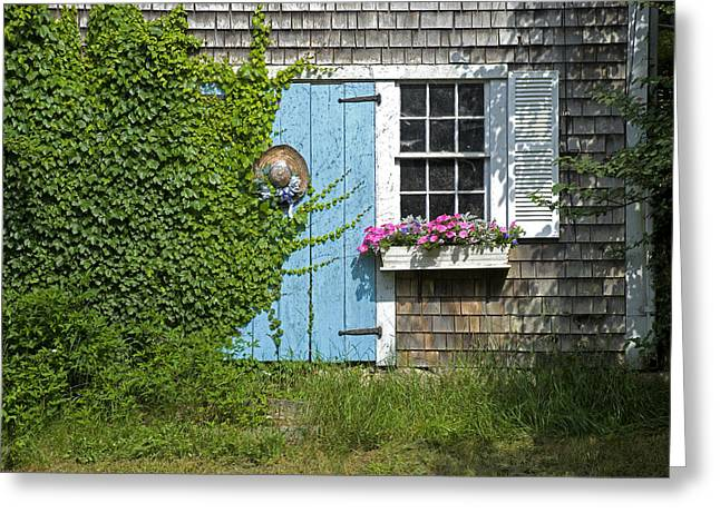 Millway Scene In Barnstable Greeting Card