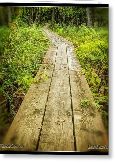 Millers Pond Board Walk Greeting Card by LeeAnn McLaneGoetz McLaneGoetzStudioLLCcom