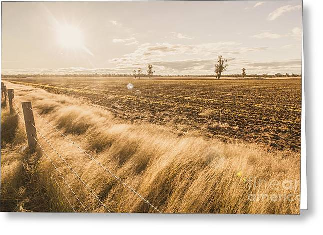 Millmerran Greeting Card by Jorgo Photography - Wall Art Gallery