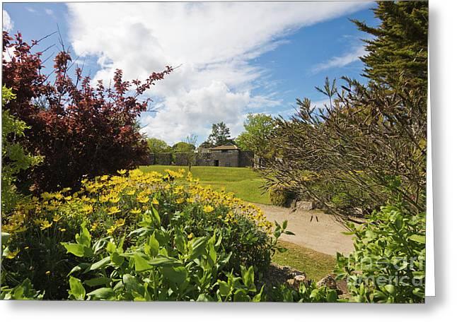 Millpond Gardens Hayle Greeting Card