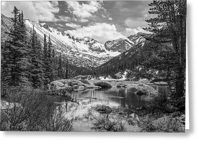 Mills Lake Black And White Greeting Card by Aaron Spong