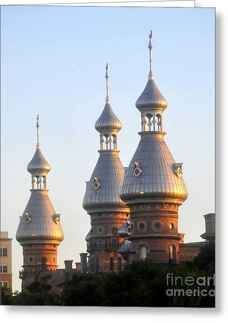 Minarets Over Tampa Greeting Card by David Lee Thompson
