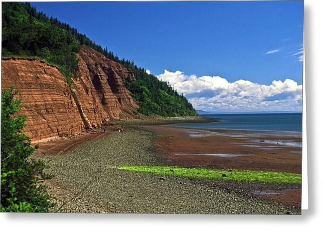 Minas Basin Nova Scotia Cliffs Greeting Card by Sally Weigand