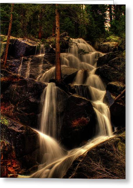 Quaking Aspen Falls Along Tioga Pass  Greeting Card