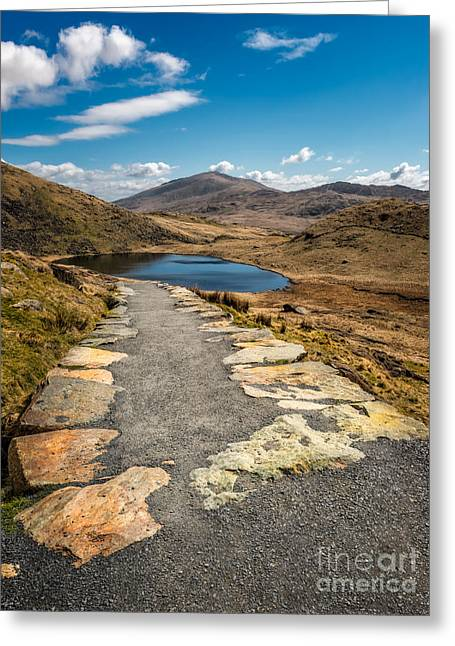 Miners Path Greeting Card by Adrian Evans