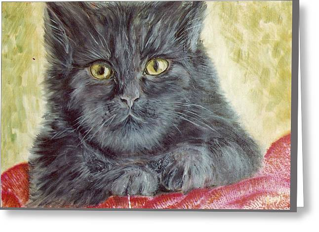 Black Cat Greeting Card by Remy Francis