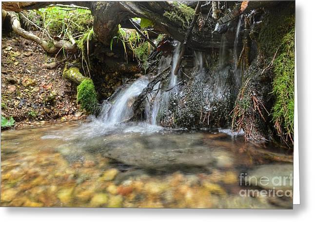 Mini Waterfal Greeting Card by Jared Eggo