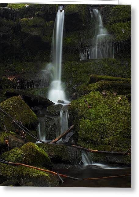Mini Waterfall In The Forest Greeting Card by Jeff Severson