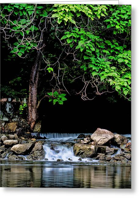 Mini Waterfall On The St Joe River After Rain Greeting Card