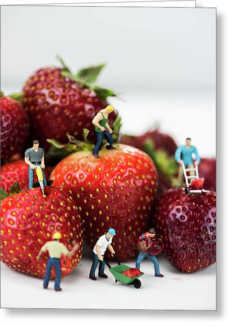 Miniature Construction Workers On Strawberries Greeting Card