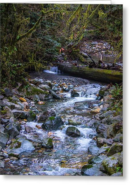 Minimal Waterfall  Greeting Card