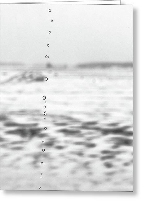 Minimalist Winter Landscape Greeting Card