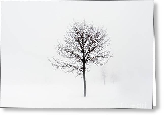 Minimum Visibility Greeting Card