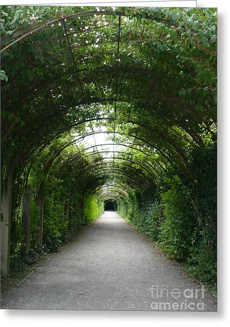 Mirabell Garden Arbor Greeting Card
