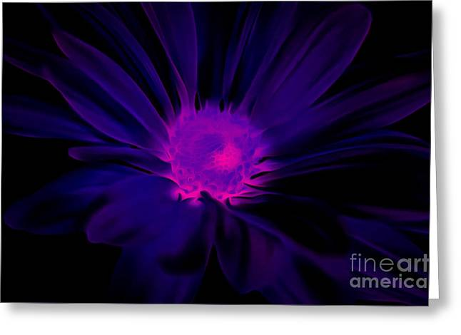 Miracles Happen Greeting Card by Krissy Katsimbras