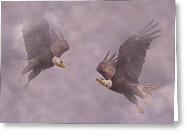 Mirror Eagles Greeting Card