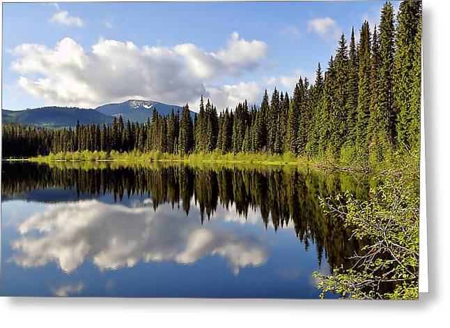 Greeting Card featuring the photograph Mirror Image by Blair Wainman