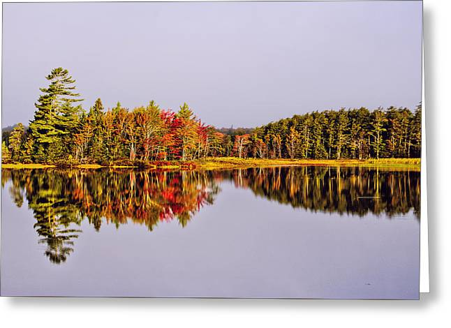 Mirror Of Beauty Greeting Card