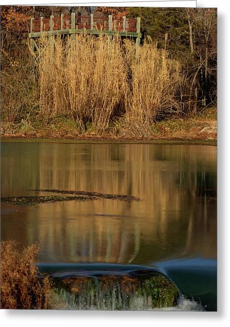 Mirror Spring 2 Greeting Card by Douglas Barnett