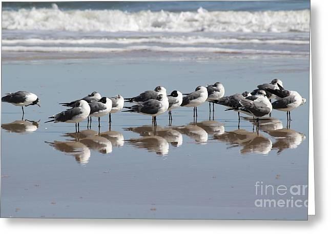 Mirrored Flock Greeting Card